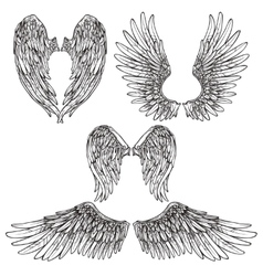 Wings sketch set vector
