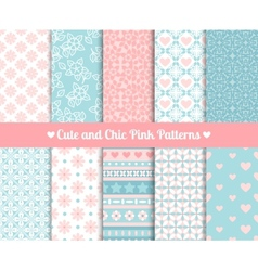 Chic Pink and blue Patterns vector image