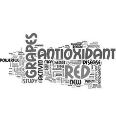 Antioxidant juice text word cloud concept vector
