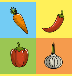 Carrot red pepper chili pepper and garlic vector