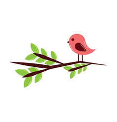 cute bird in branch tree lovely animal vector image