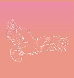 Hand-drawn graphics bird predator bird of prey vector