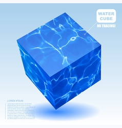 water cube vector image