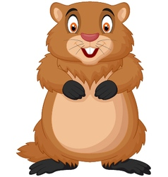 Cartoon happy groundhog vector image