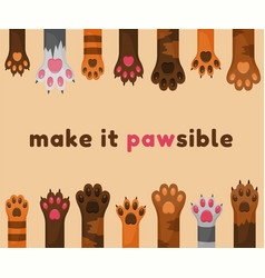 cats and dogs paws cartoon background animals vector image