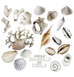 Collection of watercolor seashells and corals vector image
