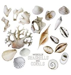 Collection watercolor seashells and corals vector