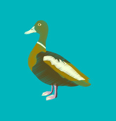 flat shading style icon wild duck vector image