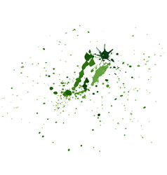 green watercolor splatters hand-painted isolated vector image