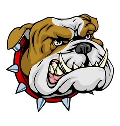Mean bulldog mascot vector