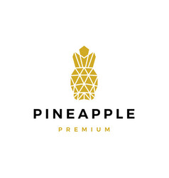 Pine apple geometric logo icon vector