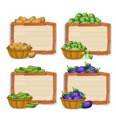 set of wooden banner and vegetable vector image