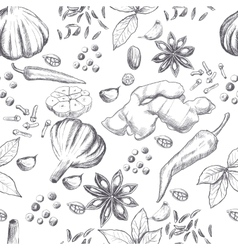 Hand drawn seamless set of organic spices vector image vector image