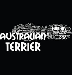 australian terriers make loyal pets text vector image