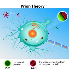 Prion Theory vector