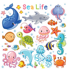 sea animal in childrens style vector image vector image
