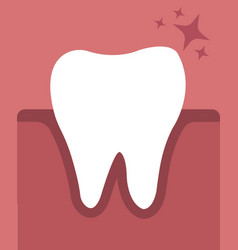 Tooth in gums vector