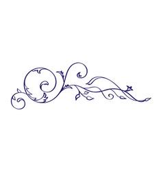 vintage calligraphy flourish element vector image