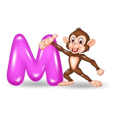 Cartoon of M letter for Monkey vector image