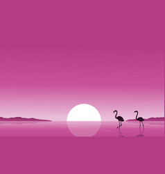 collection stock of flamingo on lake scenery vector image