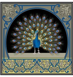 Frame with peacock vector image vector image