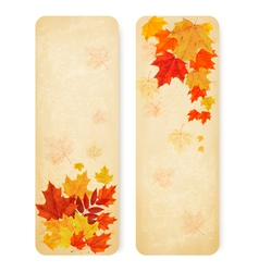 Abstract autumn banners with color leaves vector image
