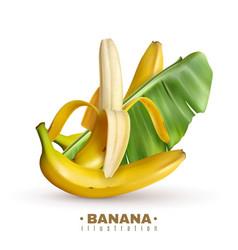 Fruit banana realistic background vector