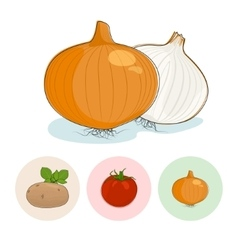 Icons OnionTomatoes Potato vector image