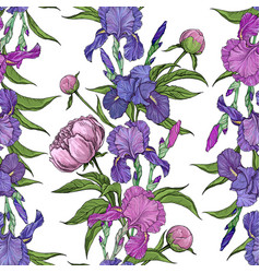 seamless pattern flowers peonies and irises vector image