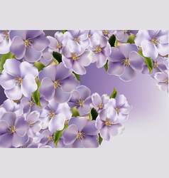 Violet flowers background realistic spring vector