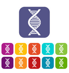 Dna strand icons set vector