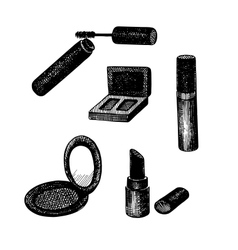 set of hand drawn decorative cosmetics vector image vector image