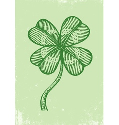 Clover on old paper vector