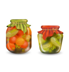 homemade preserves vector image