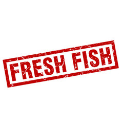 Square grunge red fresh fish stamp vector