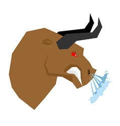 Angry bull Head of an aggressive beast with big vector image vector image