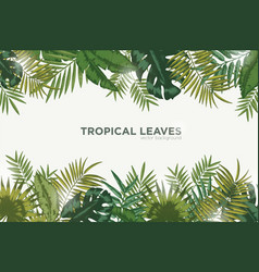 horizontal background with green leaves of vector image