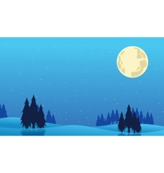 Beautiful landscape spruce Christmas of vector image vector image