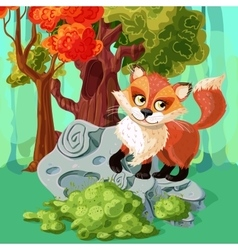 Red Fox Cartoon Style Design vector image