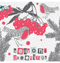 Berry Sparrows Christmas Greetings vector image