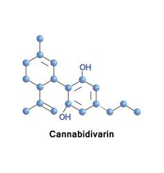 cannabidivarin non-psychoactive cannabinoid vector image