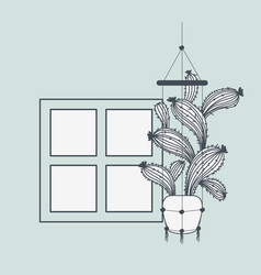 houseplant in macrame hanger with window vector image