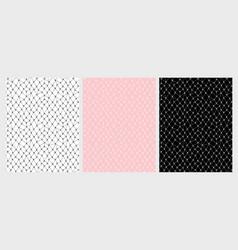 lace mesh pattern set 3 various colours vector image