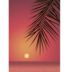 Red sunset vector