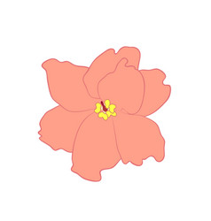 saintpaulia flower vector image