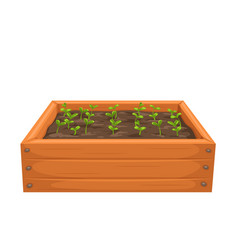 Seedling in a wooden box vector