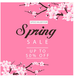 special offer spring sale up to 50 off sakura bac vector image