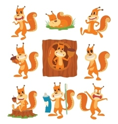 Squirrel set vector