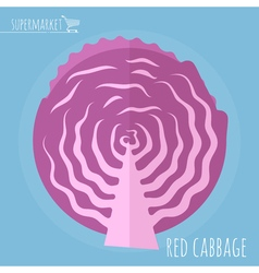 Red cabbage icon vector