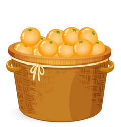 A basket of orange vector